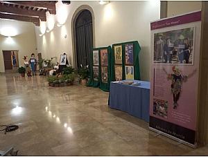 Inaugurada la exposición sobre Los Mayos en el Palacio de San Esteban