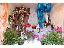 Cruces de Mayo - Foto 4