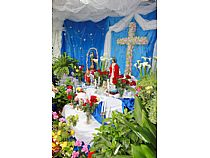 Cruces de Mayo - Foto 12