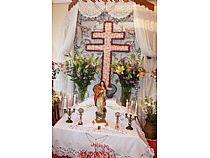 Cruces de Mayo - Foto 15