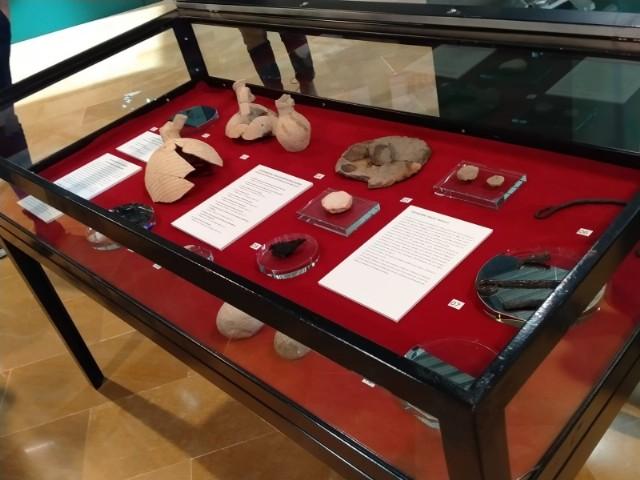 Estudiantes del IES Miguel Hernández visitan la exposición ´De la excavación al museo